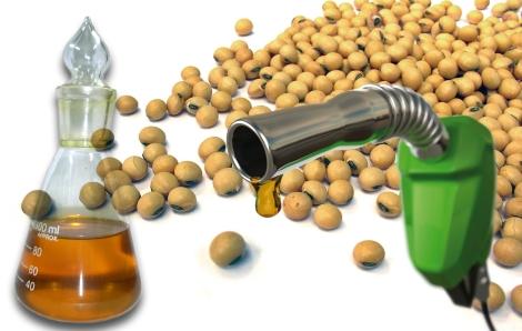Bioenergía - Biocombustibles de 2a Generación