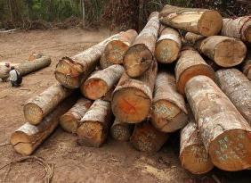 Madera y otros materiales renovables - Biocombustibles 2a Generación